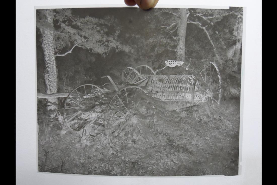 Photo Négatif argentique (chambre photographique 8 X 10)